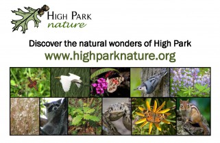 HighParkNaturePostcard-2