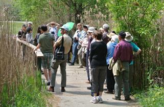 walking_tours_pond2_321x2